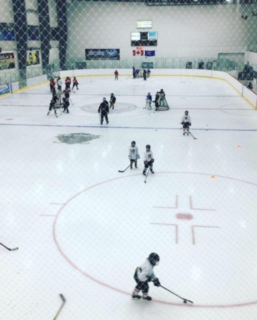 North Legacy Hockey Full Professional Training